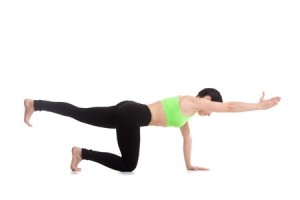 bird dog is an exercise to strengthen your lower back